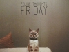 friday_nelis-botha