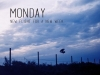 monday_thomas-pepler